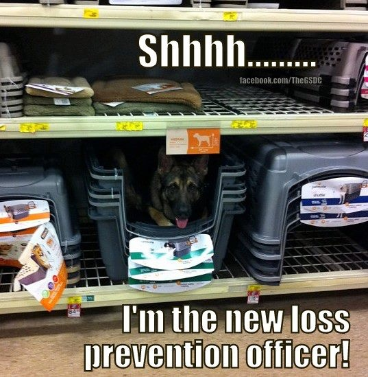 loss prevention officer 33-909902 - retail loss prevention specialists implement procedures and systems to prevent merchandise loss loss prevention investigator, loss prevention leader, loss prevention officer, loss prevention specialist, retail asset protection specialist.
