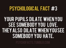 Your pupils dilate when you see somebody you love, they also dilate when you see somebody you hate.jpg