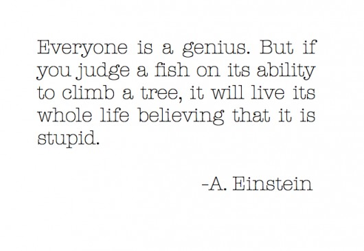 albert einstein fish quote tumblr image quotes at