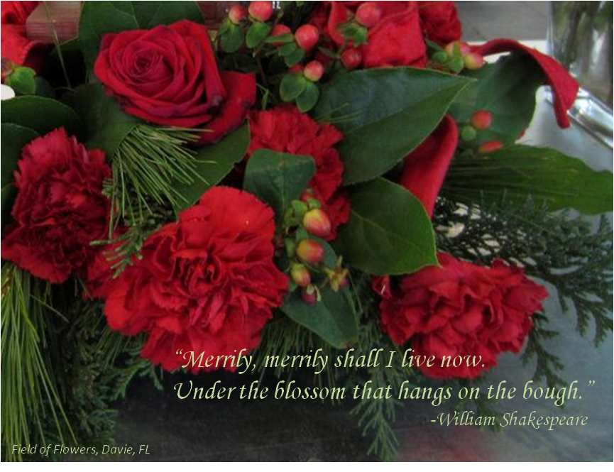 Christmas Quotes Image Quotes At Relatably Com: BOUQUET PRESENTATION QUOTES Image Quotes At Relatably.com