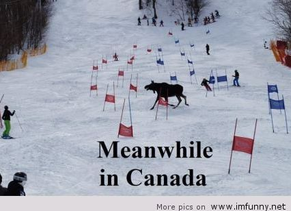 Happy Canada Day Funny Pictures +30 Pics