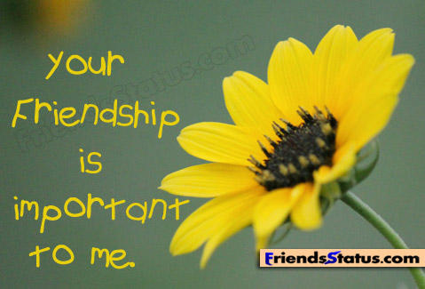Wallpaper Source FRIENDSHIP QUOTES WITH IMAGES FOR FACEBOOK Image Quotes At Relatably
