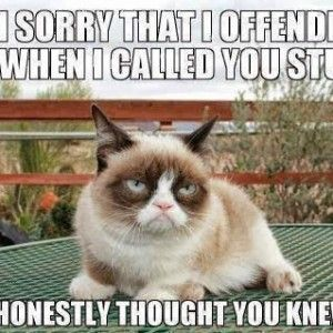 Funny Quotes About Cat Lovers : FUNNY QUOTES ABOUT CAT LOVERS image quotes at relatably.com