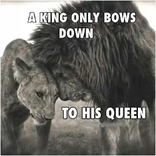 KING AND QUEEN RELATIONSHIP QUOTES Image Quotes At