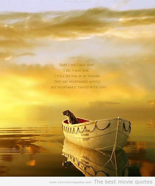 life of pi survival of the fittest Life of pi (dvd) : a young pi patel, overcoming a cataclysmic shipwreck, finds himself stranded on a lifeboat with the last survivor, a ferocious.