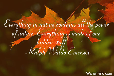 Nature Essay Emerson Quotes